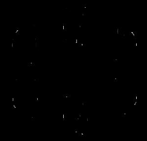 Bleistiftzeichnung verschiedene Intimfrisuren
