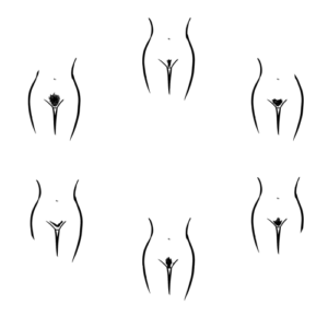 Grafik Verschiedene Intimfrisuren